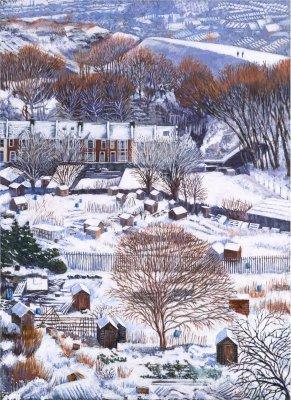 Allotment Snow