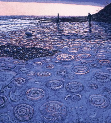 Ammonite Pavement (Large)