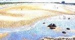 Cricket on the Beach