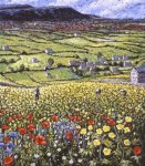 Dales Wildflowers