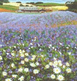 Linseed and Daisies