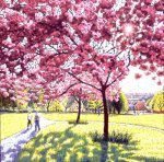 Park Blossom
