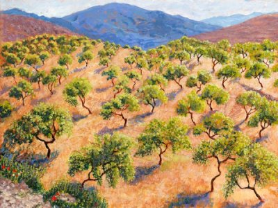 Summer Almond Orchard