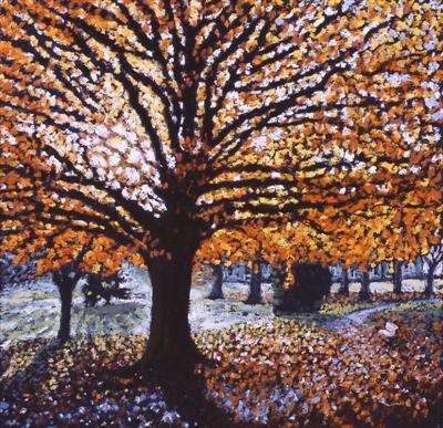 Trees Against the Light